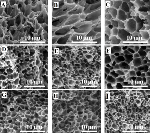 Fabrication of Nanocomposite Foam by Supercritical CO2 Technique For Application in Tissue Engineering