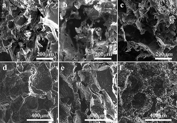 Nanoclay Reinforced Starch-Polycaprolactone Scaffolds for Bone Tissue Engineering